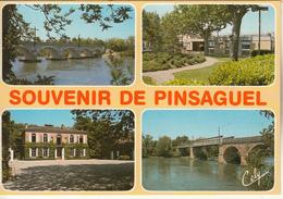 PINSAGUEL ( Ses Ponts,Château Lagoutine,la Mairie) - France
