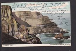 D19 /   Pleaskin Head , Belfast 1905 - Other