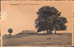Beyne-Heusay - Le Tilleul à Sainte-Anne (petite Animation, Edition Delrez) (prix Fixe, à Saisir) - Beyne-Heusay