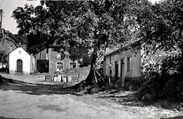 Vresse S/Semois - Chemin Montant à La Chapelle (prix Fixe, à Saisir) - Vresse-sur-Semois