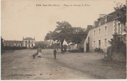 56 Guer Place Du Champ De Foire Près Du Camp De Coetquidan  S15 - Guer Coetquidan