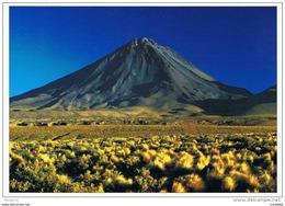 CPM..CHILI..MAXI CARTE 12X17 - Chile