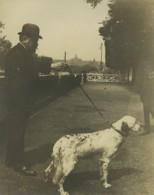 France Paris M Lasseran & Son Chien Prince De Colombes Setter? Ancienne Photo 1900 - Places