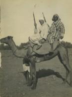 Algerie Vie Quotidienne Dromadaire Fusils Ancienne Photo 1930 - Places