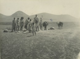 Algerie Campagne Vie Quotidienne Groupe Hommes Enfants Mulets Ancienne Photo 1930 - Places