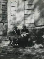 France Paris Place Du Tertre Dames Tricot Et Sieste Chien Ancienne Photo 1952 - Places