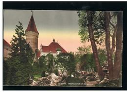 OPPELN Piastenschloss Mit Steingruppe - Polonia