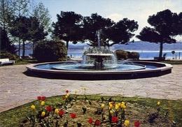 Arona - Lago Maggiore - Lungolago - 8687 - Formato Grande Non Viaggiata – E 15 - Italia