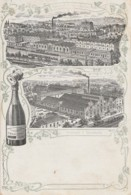 51) EPERNAY - CHAMPAGNE MERCIER & Cie - CHATEAU DE PEKIN - SUCURSALE A LUXEMBOURG  - 2 SCANS) - Epernay