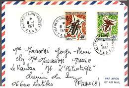 30418 - ALFRED FAURE  CROZET - Terre Australi E Antartiche Francesi (TAAF)
