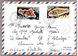 30419 - PORT AUX FRANCAIS  KERGUELEN - Terre Australi E Antartiche Francesi (TAAF)