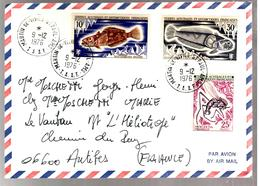 30420 - MARTIN DE VIVIES - Terre Australi E Antartiche Francesi (TAAF)