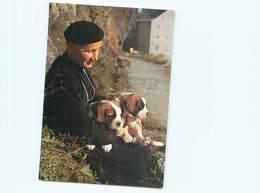 Chien  St Bernard     AO 11 - Hunde
