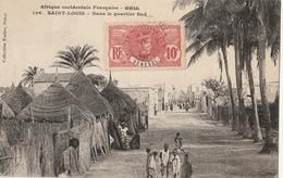 SENEGAL - SAINT LOUIS : Dans Le Quartier Sud - Senegal