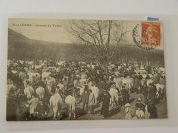 ARIEGE-ALLIERES -CHAMP DE FOIRE ANIMEE SELECTION - Autres Communes