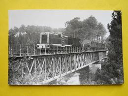 Photo Chapuis ,train Special ,Viaduc De Belin - Trains