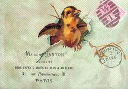 RARE CHROMO POSTER DE LONDON Maison Janton  Oiseaux - Chromos