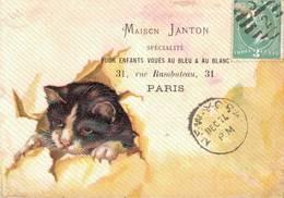 RARE CHROMO POSTER DE LONDON Maison Janton   CHAT  EN RELIEF - Chromos