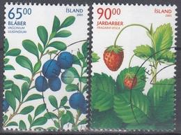 +Iceland 2005. Wild Berries. AFA 1091-92. Cancelled - Oblitérés