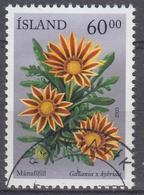 +Iceland 2003. Flowers. AFA 1014.  Cancelled - Oblitérés