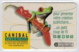 Top Collection - SEPATEL - Tirage : 250 Exemplaires - Voir Scans - France