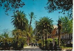 Marsala - Giardini Pubblici - H5905 - Marsala