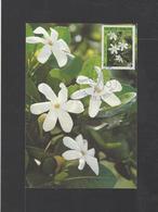POLYNESIE.  YT  Cartes-maximum    N° 372  1990 - Cartes-maximum