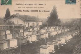 47) LAVARDAC - BARBASTE - APICULTURE - CULTURE INTENSIVE DE L'ABEILLE - J. COUTEREL - APICULTEUR - RUCHER - 2 S CANS - Lavardac