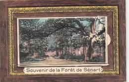 91-SENART- SOUVENIR DE LA FORÊT DE SENART, CARTE DEPLIANTE - Sénart
