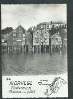 Norway; Norvège. Trondhjem , Maisons Sur Pilotis - Norvège