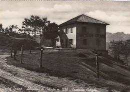 CASTEL TESINO DI CELADO-TRENTO-TRATTORIA=CELADO=CARTOLINA VERA FOTOGRAFIA VIAGGIATA IL 14-7-1957 - Trento