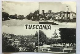 TUSCANIA- VIAGGIATA FG - Viterbo