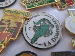 816a Pin's Pins / Beau Et Rare / THEME : SPORTS / NATATION CROCODILE LA DOMREMY - Natación