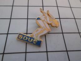 816a Pin's Pins / Beau Et Rare / THEME : SPORTS / CLUB NATATION SDUS NAGEUR - Natación