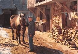 74 - Châtel - Beau Cliché - Deux Vieux Compagnons Solides - Le Cheval Et Son Maître - Châtel