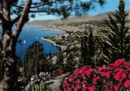 Cartolina San Remo Panorama Da Levante - Imperia