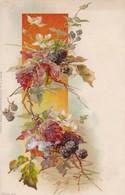 AK  Laub Beeren Blüten - Künstlerkarte - Ca. 1910 (48810) - Illustrateurs & Photographes