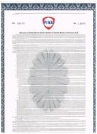 Titre Ancien - FINA  - Warrant Permettant De Souscrire à Des Actions Petrofina N° 11254 - Pétrole