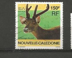 664   Cerf   (clasyveroug17) - Nouvelle-Calédonie