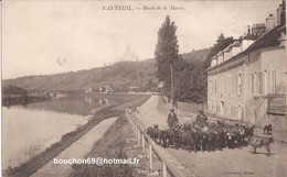 77 Nanteuil Sur Marne- Bords De La Marne Chevrier Berger Troupeau Chevre Goat - France