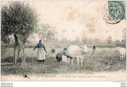 EXPEDIEE DE SAINT ETIENNE DES OULLIERES EN NIVERNAIS LA TRAITE DES VACHES DANS LA PRAIRIE 1905 - Francia