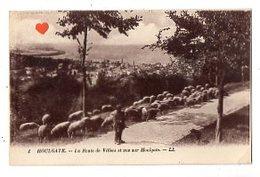 41266-ZE-14-HOULGATE-La Route De Villers Et Vue Sur Houlgate---------animée-troupeau De Moutons - Houlgate