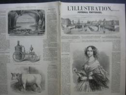 L'ILLUSTRATION 974 REINE PRUSSE/ NICCOLINI/ CAUTERETS / ESPAGNE - 1850 - 1899
