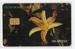 MADAGASCAR Ref MV Cards MDG-50  100 U ORCHIDEE - Madagaskar