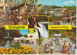 Hassloch Holiday Park Amusement Park Dolphin Monkey Goats Used - Ohne Zuordnung