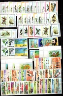 Barbuda Belle Collection Neufs ** MNH 1977/1988. Séries Complètes Et Bonnes Valeurs. TB. A Saisir! - Antigua Et Barbuda (1981-...)