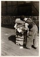 Photo Originale Portrait D'un Chiffonnier Sur Un Quai De Chargement Vers 1940/50 - Professions