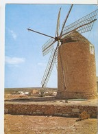 Postal 040282 : Formentera (Baleares). Viejo Molino - Cartes Postales