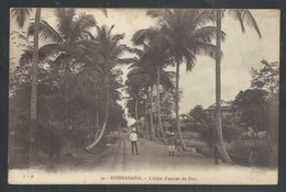 +++ CPA - Afrique - Congo Belge - SHINKAKASSA - Allée D'entrée Du Fort   // - Belgisch-Congo - Varia