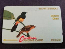 MONTSERRAT  $20,-  ICTERUS OBERI   4CMTA   Fine Used Card  ** 1265 ** - Montserrat
